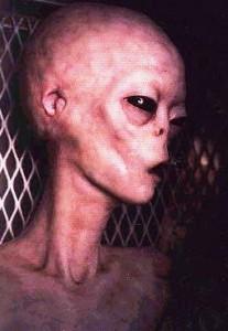 Alien Pic